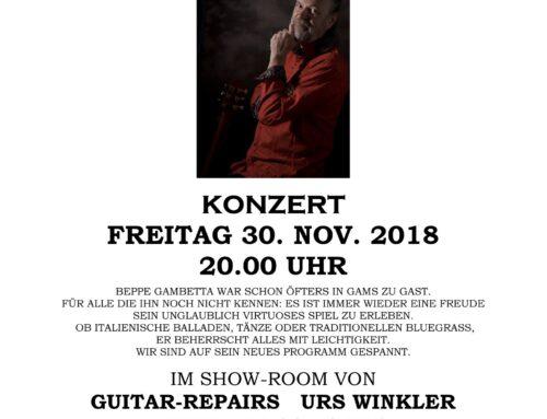 Konzert Beppe Gambetta 2018